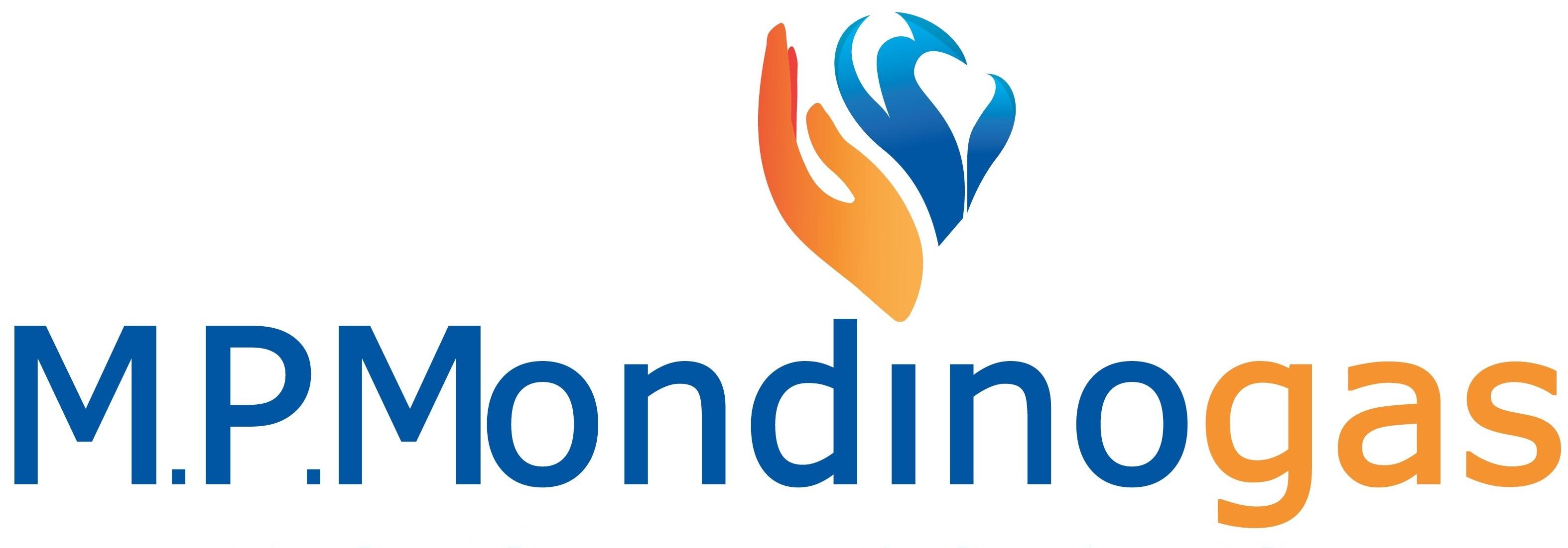 M.P. Mondino S.r.l.
