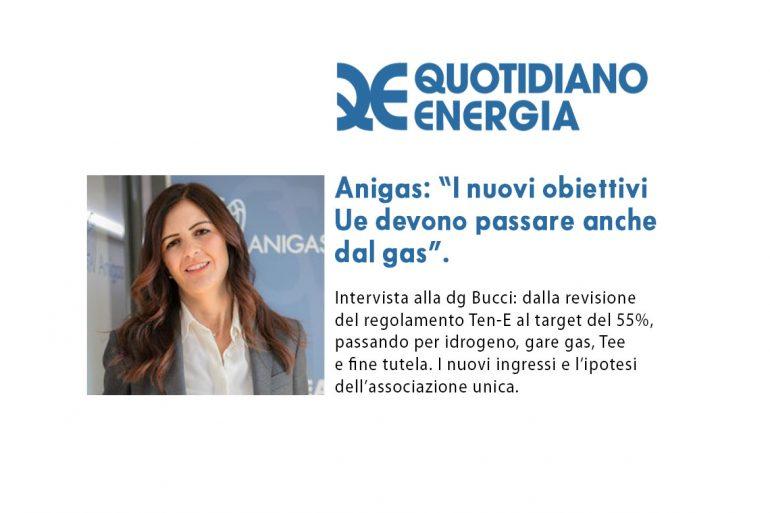 Intervista di Quotidiano Energia al DG Anigas