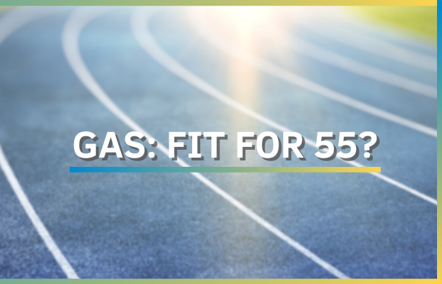 Eurogas Annual Conference: GAS: FIT FOR 55?